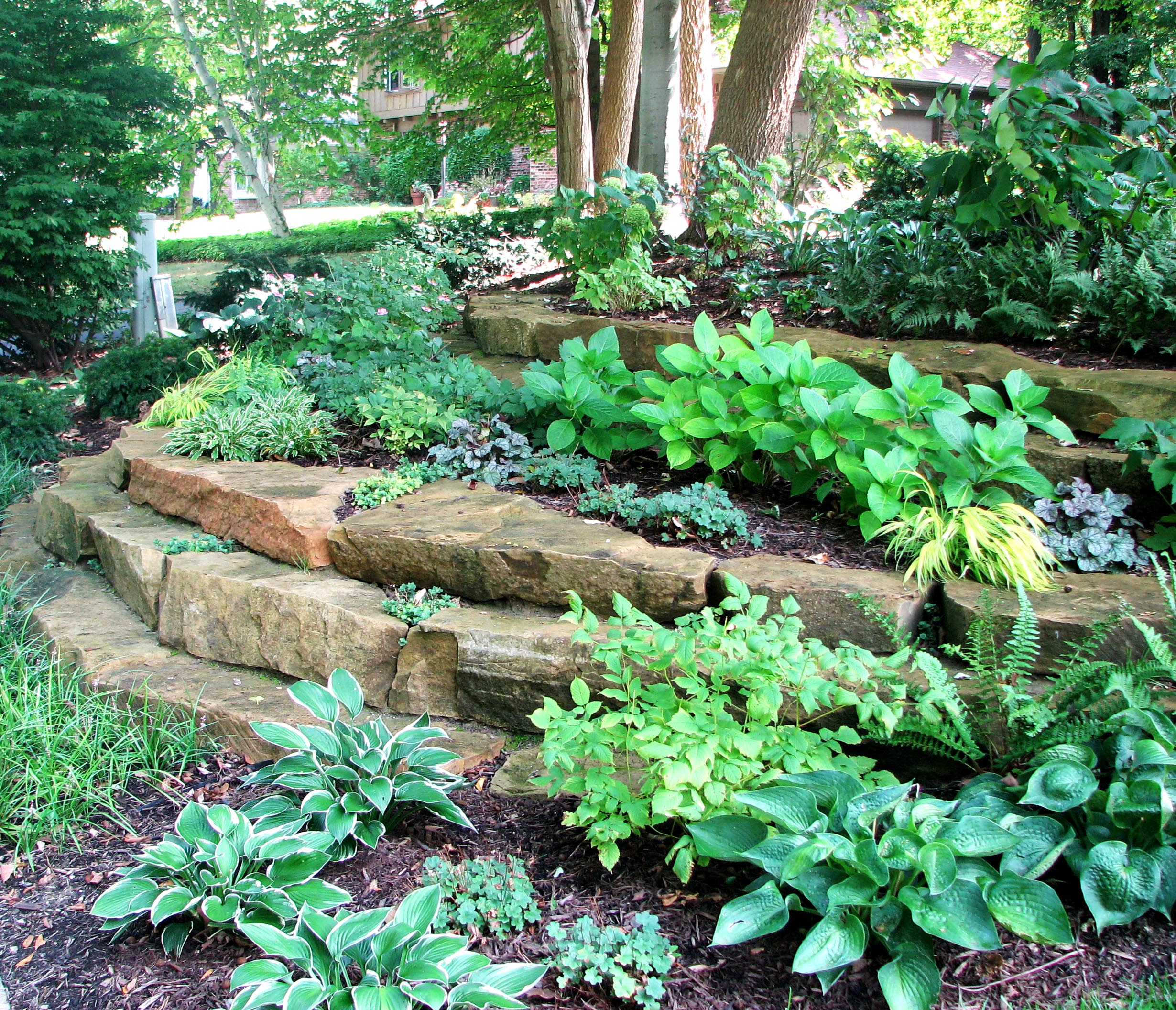 Shade gardens indianapolis for Shade garden designs